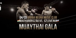 fight_night_hungary_20160403